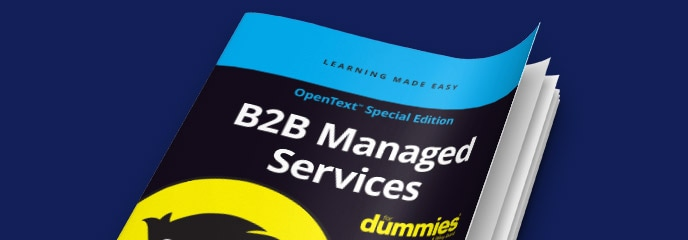 B2B Managed Services for Dummies guide cover image