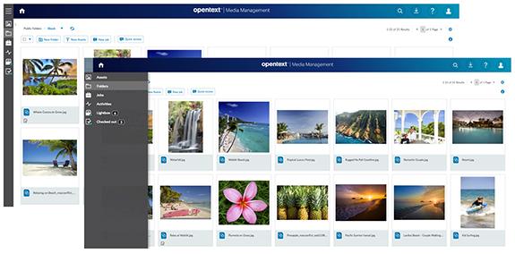 Digital Asset Management | OpenText